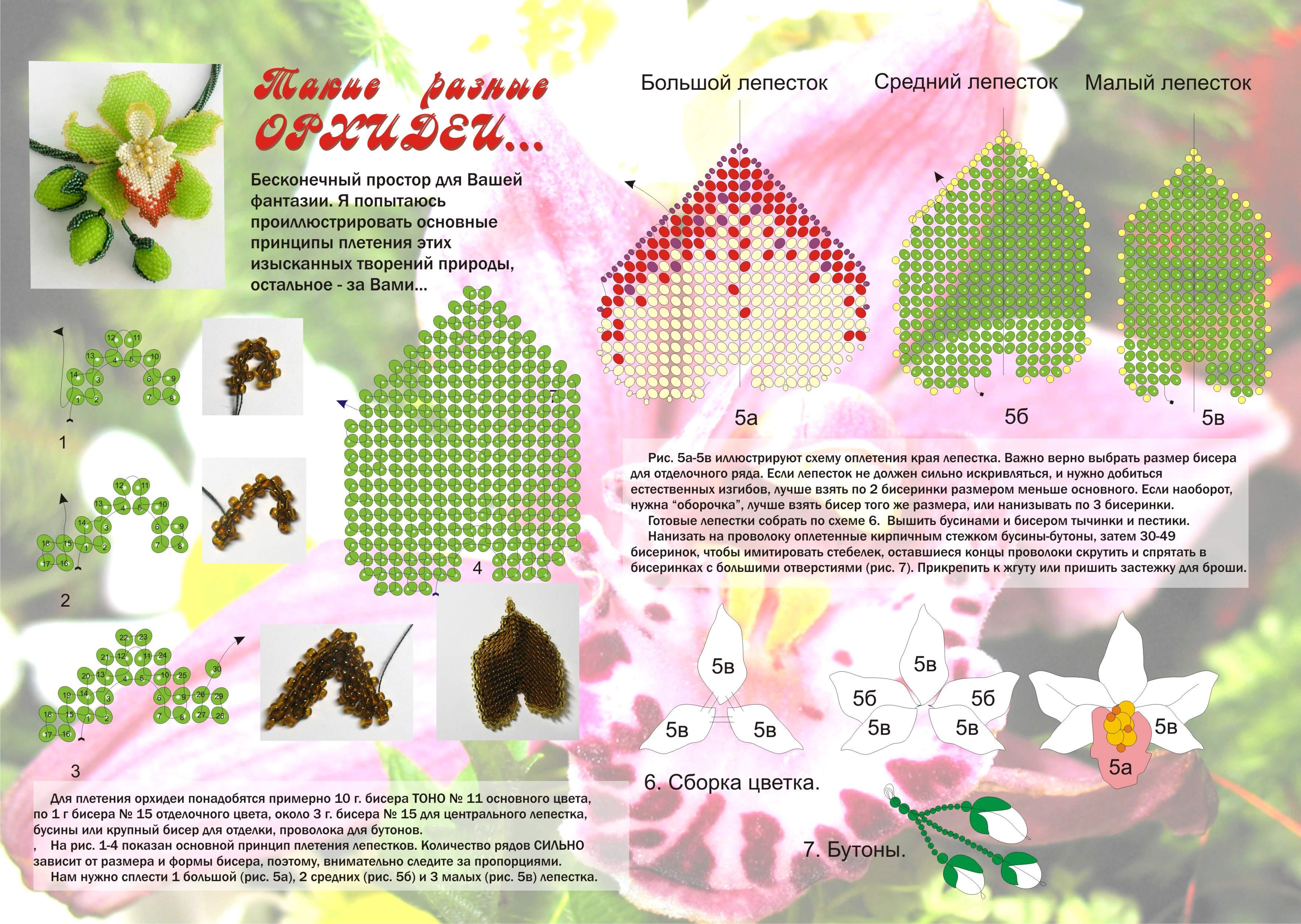 Орхидея из бисера цветок схема