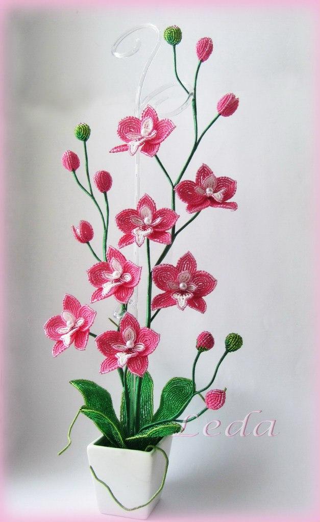 Орхидея из бисера своими руками фото